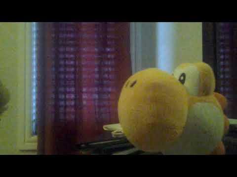 SMF: Orange yoshi get's a guinness world record