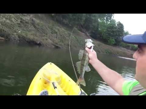 """Pesca ao lúcio perca rio tâmega """"marco de canaveses"""""""