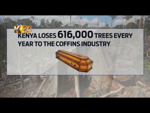 Coffin makers decry about the high prices of timber