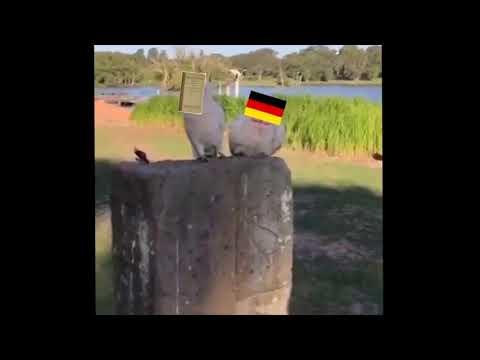 treaty of versailles x germany