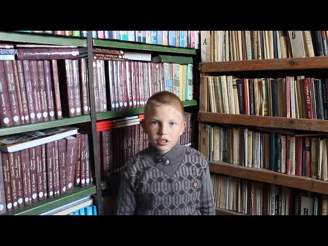 Изображение предпросмотра прочтения – ВладимирКрайников читает произведение «Синица» И.С.Тургенева