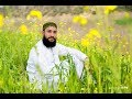 WhatsApp Status Naat Hafiz Muneer Ahmed Whatsapp Status Video Download Free