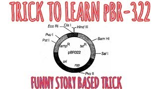 Most efficient and funny trick to learn pBR-322 on your tips/story based biotech tricks.