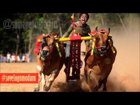 Lagu Madura: Kacong Tor Jhebbing