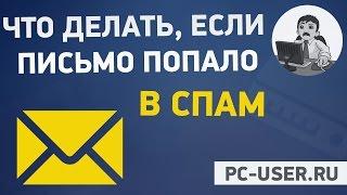 Інформація для передплатників та інструкція про те, щоб листи не потрапляли в СПАМ