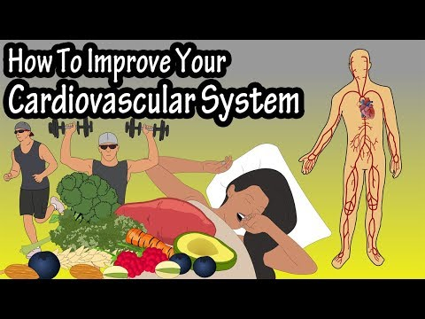 How To Improve Increase Your Cardiovascular System, Heart Rate, Endurance, Stamina And Fitness