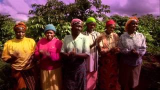 African Green Revolution
