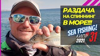 Раздача в море Паламида рыба дудка сарган это что то Рыбалка на Кипре Часть 31 Сезон 2021