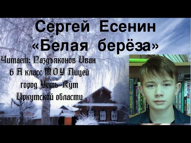 Изображение предпросмотра прочтения – ИванРаздъяконов читает произведение «Берёза» С.А.Есенина