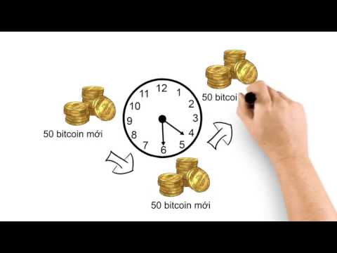 Bitcoin & BitClub Network Tiếng Việt Vietnamese  The Future Of Money