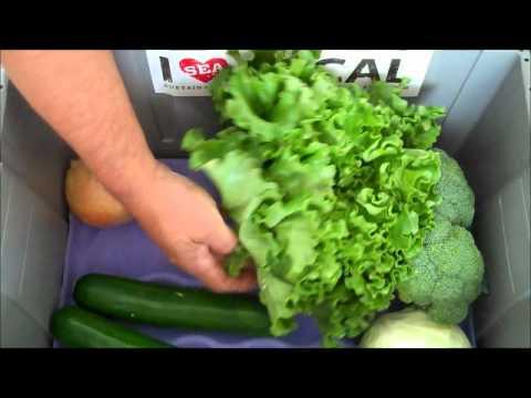 Seattle's local organic produce box - Aug. 23