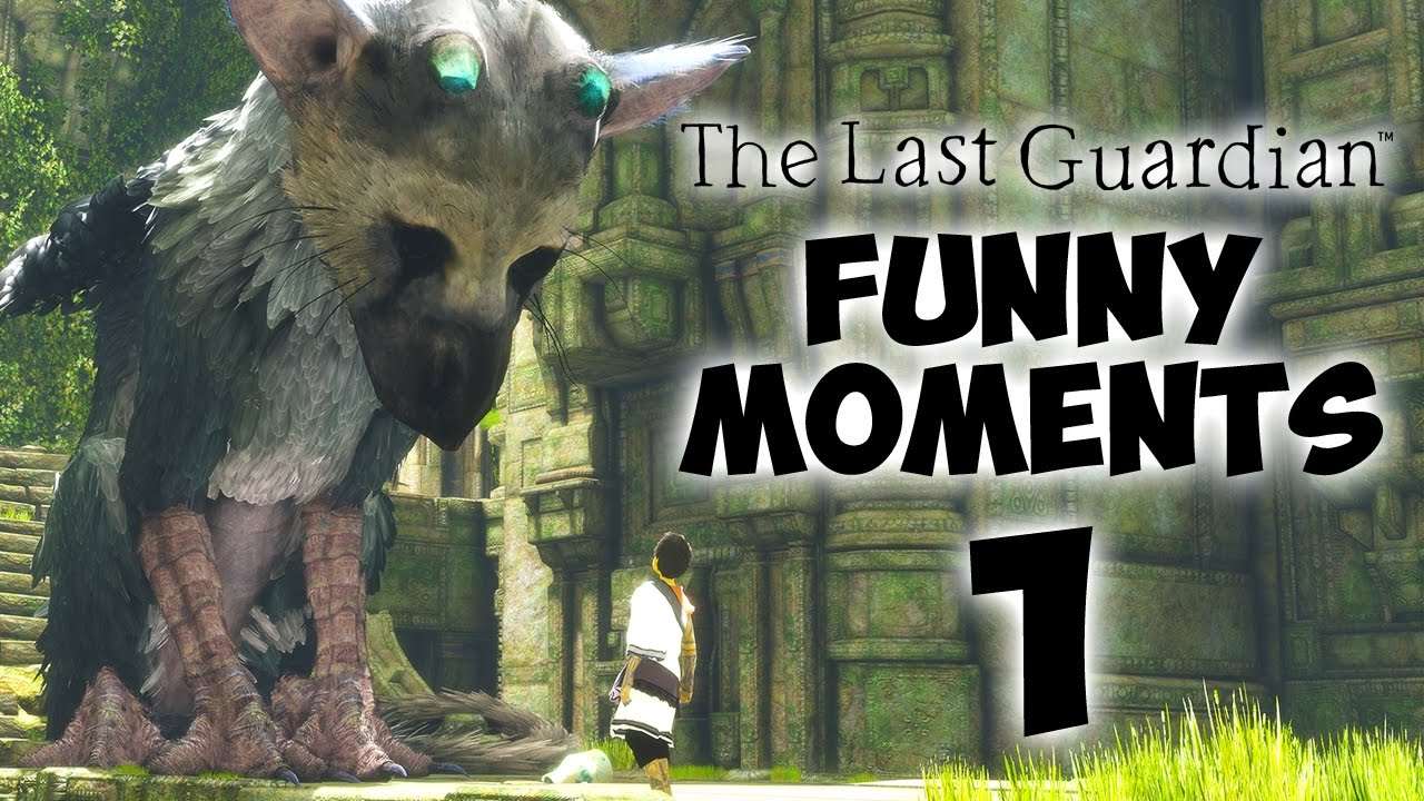 The Most Adorable Game The Last Guardian Funny Moments