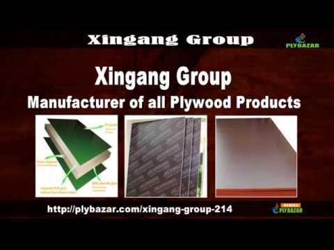 Xingang Group Lanshan District, Linyi City, Shandong Province, China