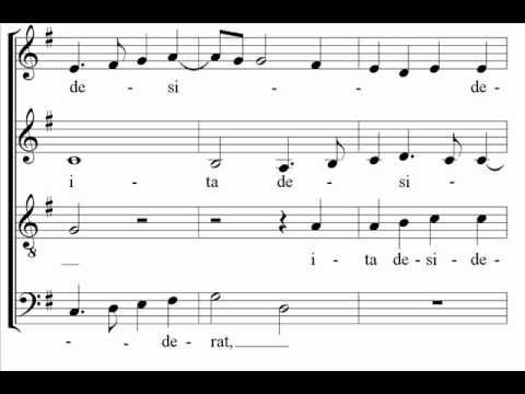 Palestrina - Sicut cervus - The Cambridge Singers