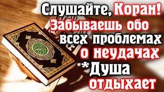 🎧 СЛУШАЙТЕ КОРАН - ЗАБЫВАЕШЬ ОБО ВСЕХ ПРОБЛЕМАХ И НЕУДАЧАХ, ДУША ОТДЫХАЕТ