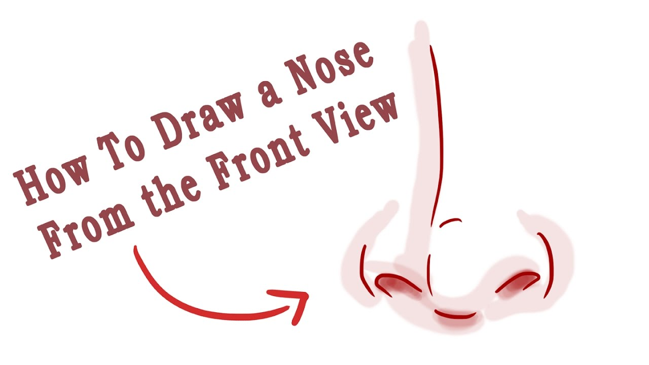 how to draw a round nose