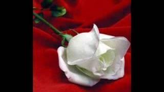 Hugo Blanco - La Rosa Blanca