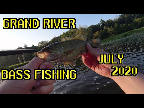 First Person Fishing - Bass Fishing With Gulp Minnows - Grand River July 2020