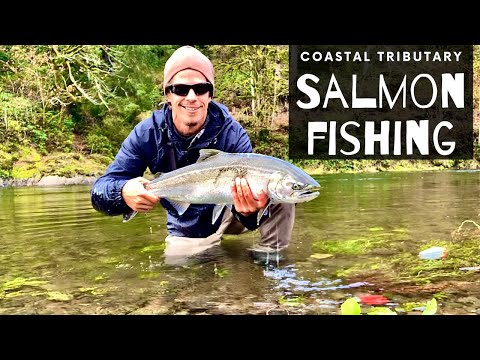 Fall Salmon Fishing (SMALL CRYSTAL CLEAR RIVER) Bobber & Eggs And Twitching Jigs For Chinook Salmon