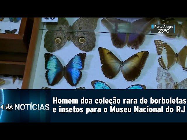 Homem doa coleção rara de borboletas para o Museu Nacional do RJ | SBT Notícias (25/02/2019)