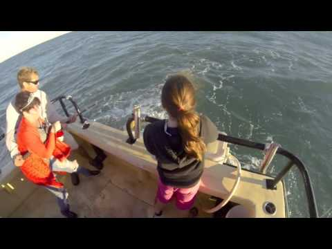 5 Hour Shark Trip  | Deep sea fishing offshore private chart