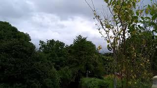 Baixar Som da Natureza muito gostoso de ouvir