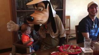 Baby Meets Goofy at Disney's Animal Kingdom Tusker House Character Dining