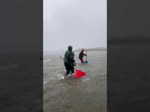 Mariscadoras heroicas en Cambados nun día de temporal