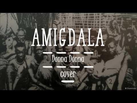 Amigdala - Donna Donna (cover)