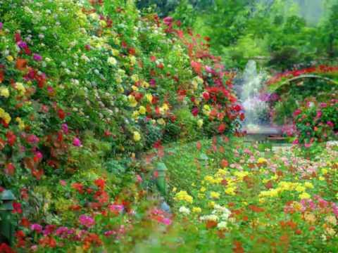 Amazing flower gardens youtube amazing flower gardens mightylinksfo
