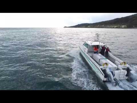 Cheetah Marine: Round the Island on Hydrogen. Car vs Catamaran