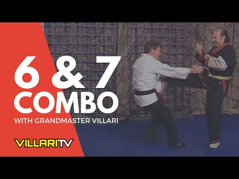 Villari's Shaolin Kempo Karate 6 & 7 Combination