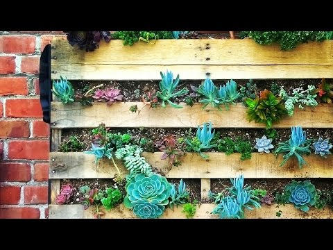 How To Build Incredible Vertical Gardens