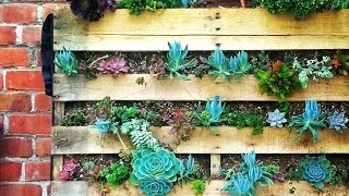 How To Build Incredible Vertical Gardens | Amazing Earth