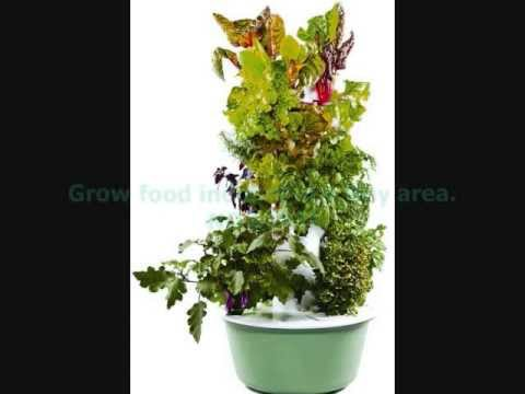 How To Be A Gardener 8 The Productive Garden YouTube