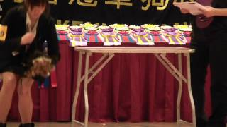 15 April 2012 176  Hk Kennel Club Dog Show Yorkshire Terrier.mp4