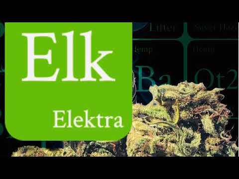 Elektra Strain Review from Canna Comforts - Hemp Bud Forum