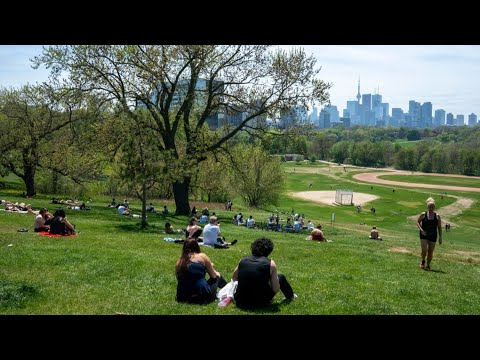 Green spaces in cities save lives and dollars: study