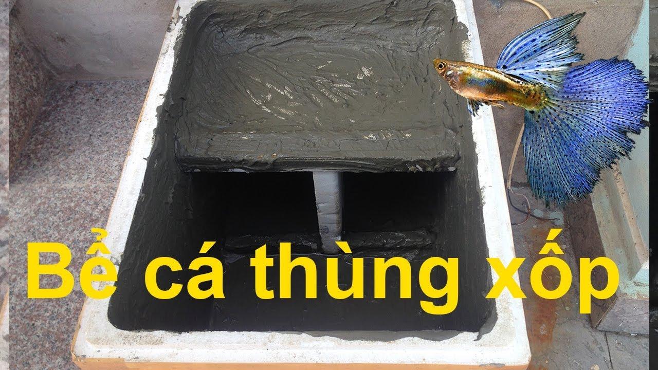 Làm bể cá thùng xốp nuôi cá cảnh chỉ với 50k
