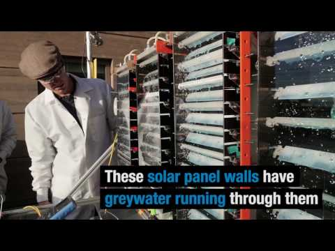 Why waste water? These solar panels recycle greywater, produce energy