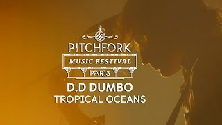 "D.D Dumbo | ""Tropical Oceans"" 