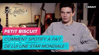 Petit biscuit : comment Spotify a fait de lui une star mondiale ! - Le Tube du 27/12 - CANAL+