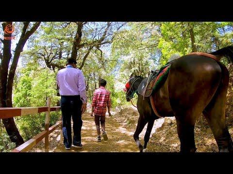 Nainital Sightseeing Vlog | Nainital Uttarakhand | Lovers Point Nainital | Nainital Horse Riding