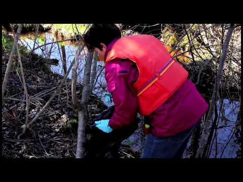 Marais du Nord corvée annuelle de nettoyage