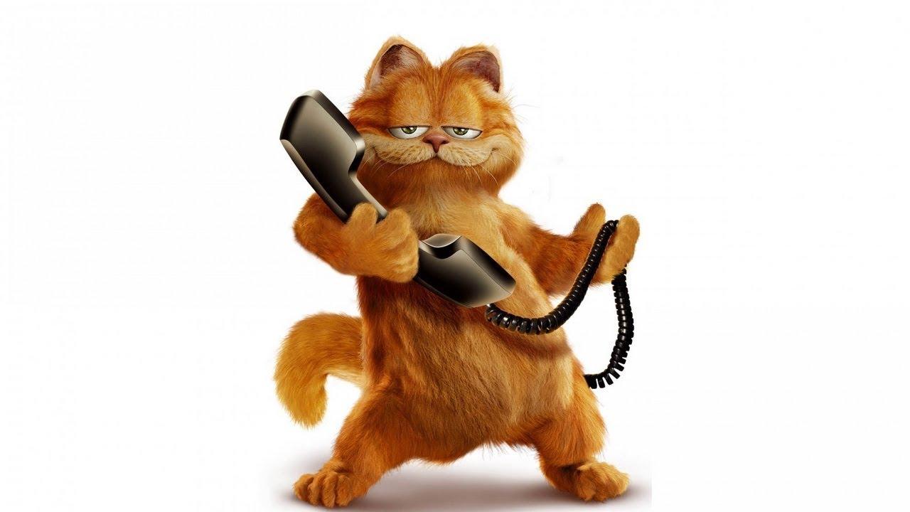 Garfield Porn garfield porn wtf - youtube