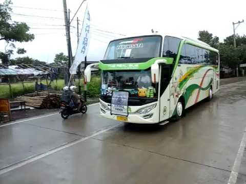 2 unit bus tifanha