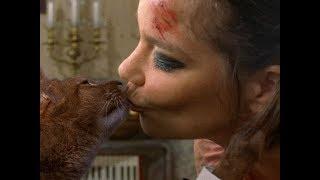 Смотреть клип Björk - Triumph Of A Heart