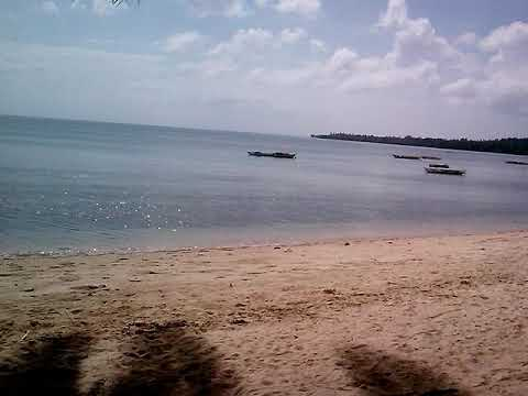 beach adventure by radio survivor guy