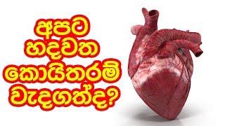 අපට හදවත කොයිතරම් වැදගත්ද? | Piyum Vila | 12- 03 - 2019 | Siyatha TV Thumbnail