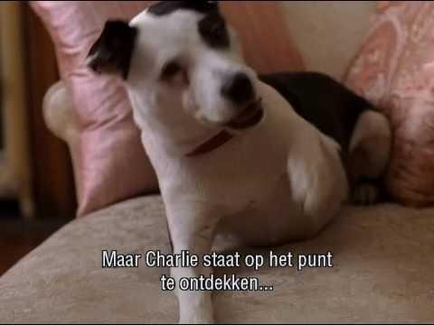 Heavy Petting - Trailer